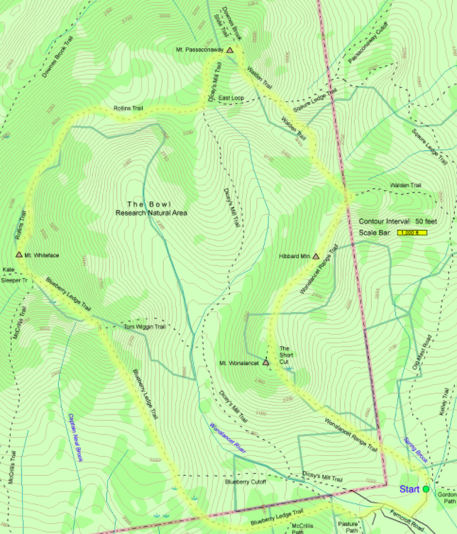 Mount Whiteface Trail Map