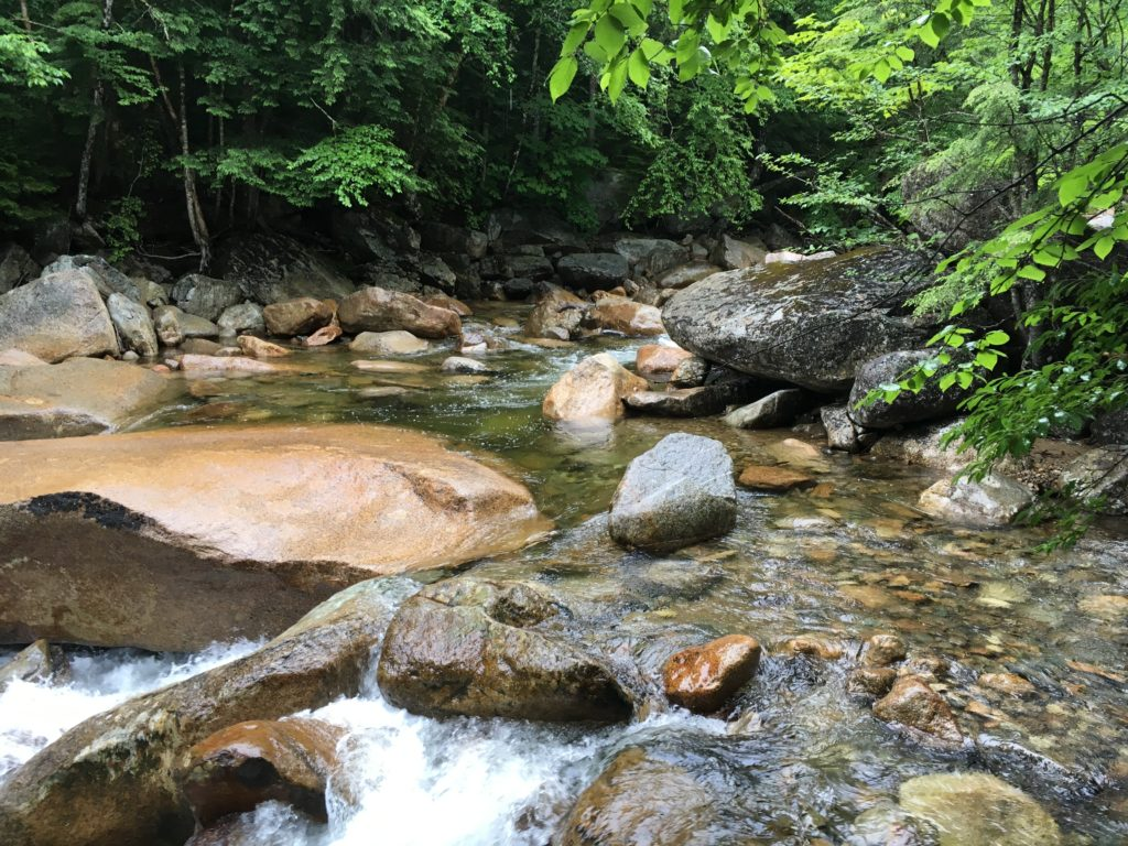 White Mountain Fishing Stream
