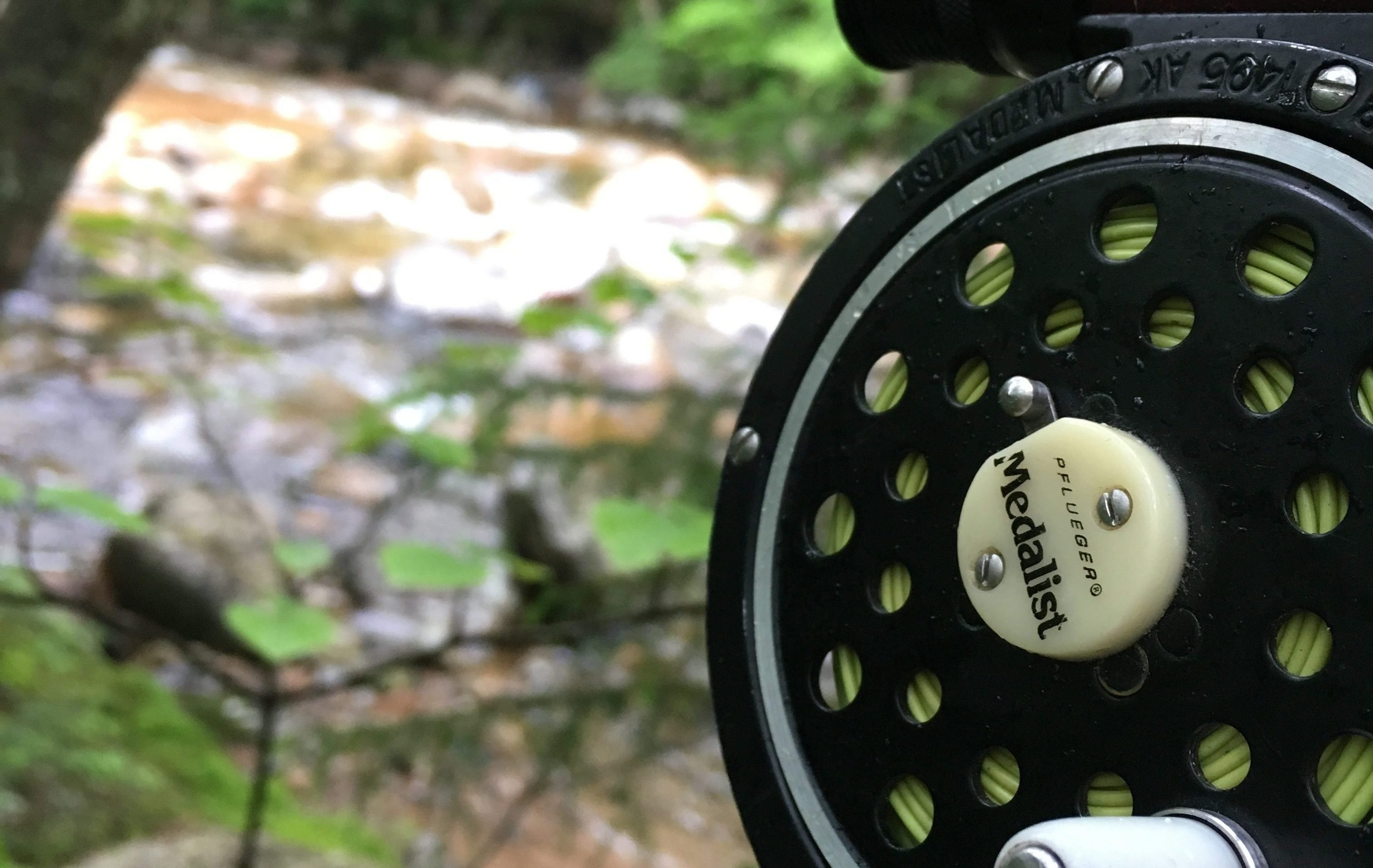 Best Beginner Fly Rod Combo: The Top 6