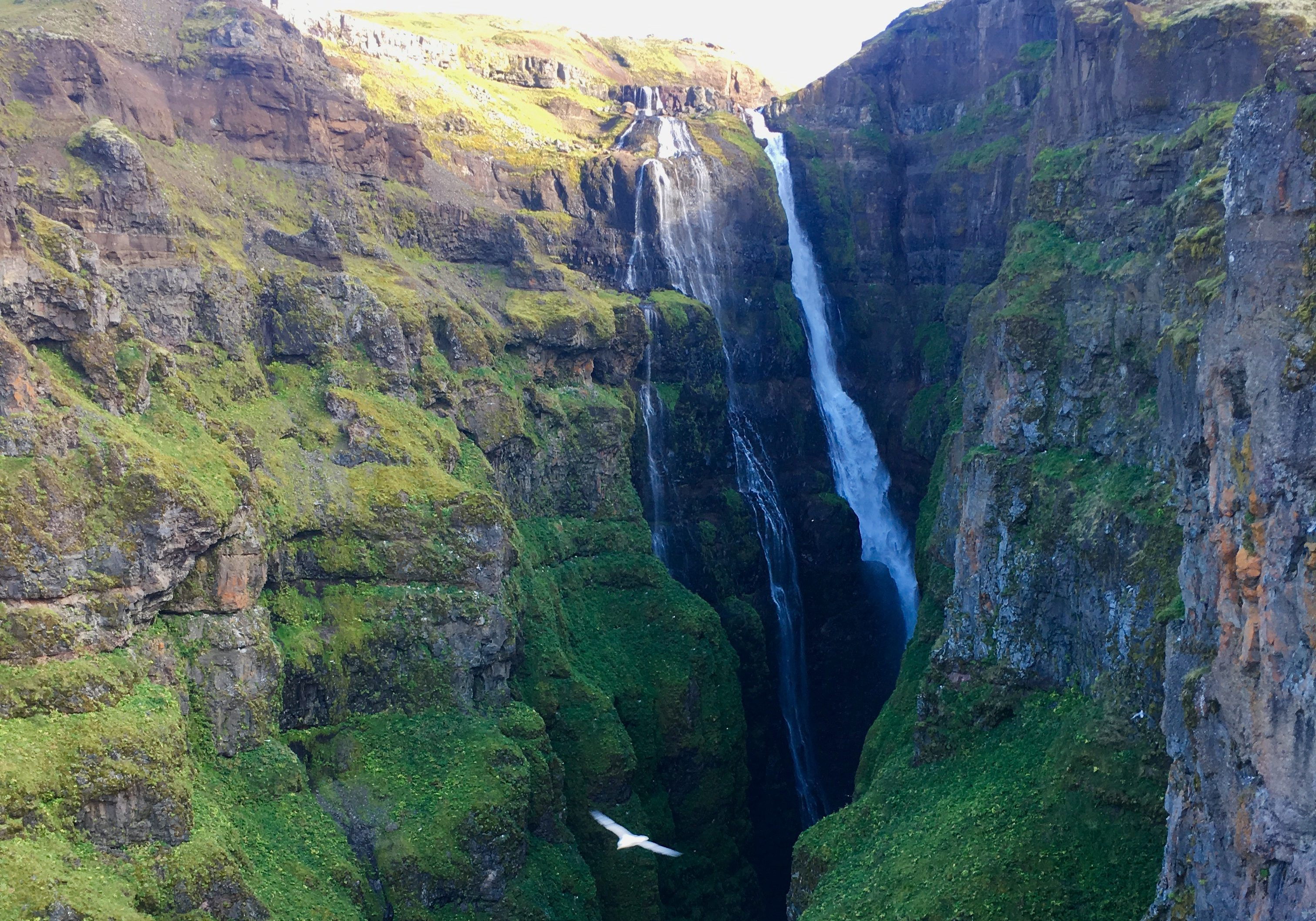 Hiking to Glymur Falls | Everything You Need to Know | Iceland