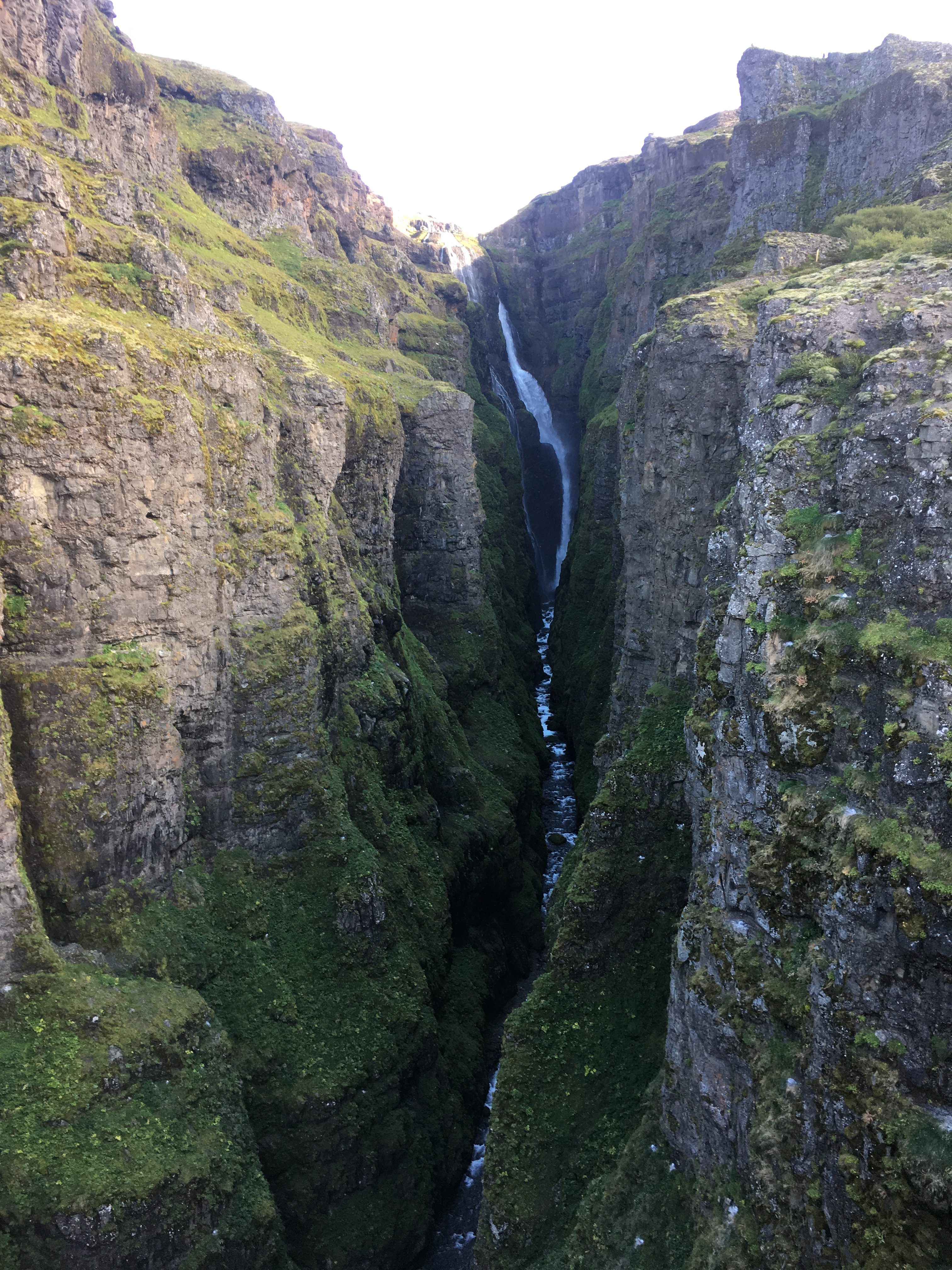 From Glymur Falls Lookout Point