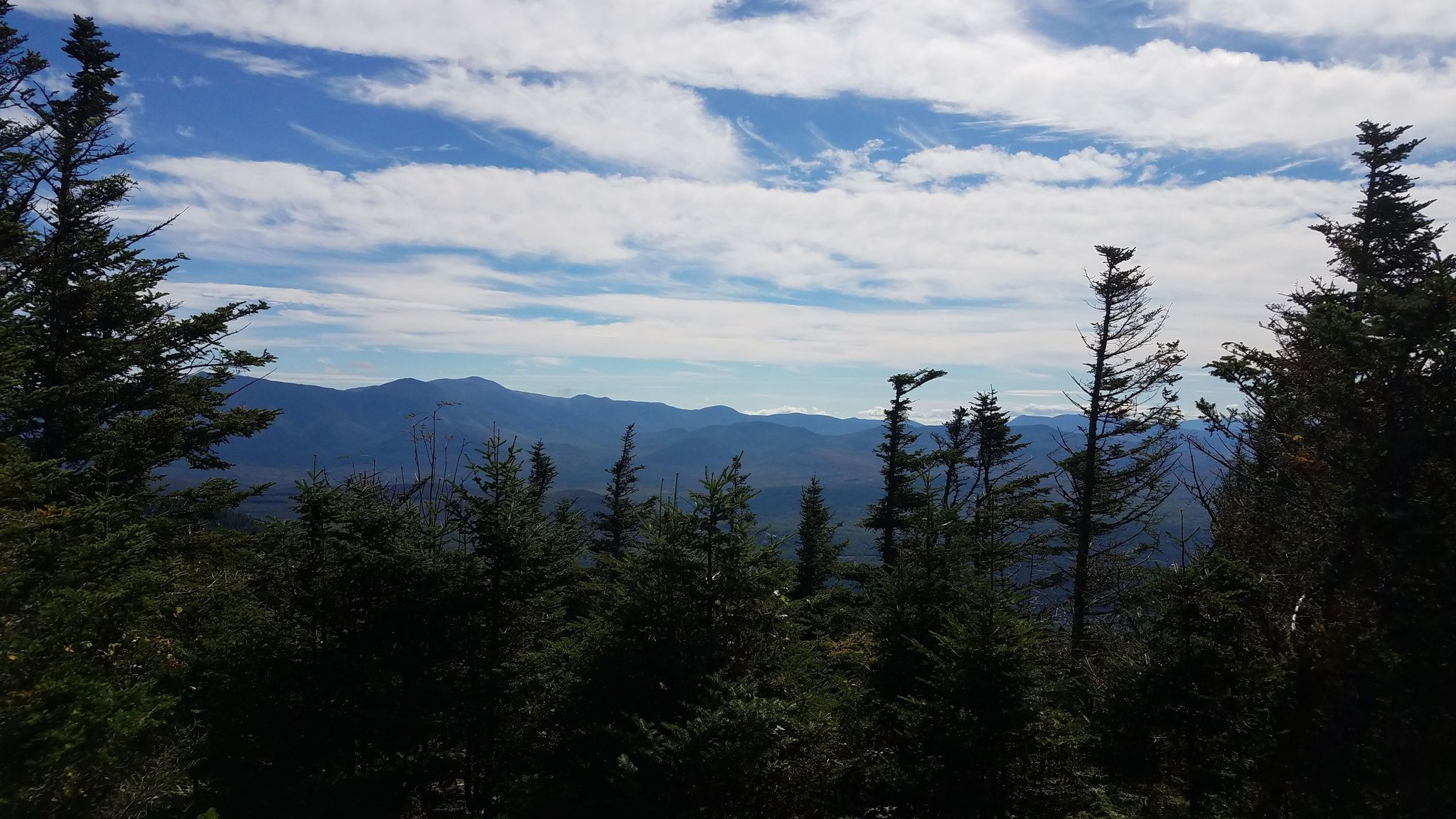 Mount Waumbek Hiking Trail Guide: Map, Trail Descriptions, Pictures & More