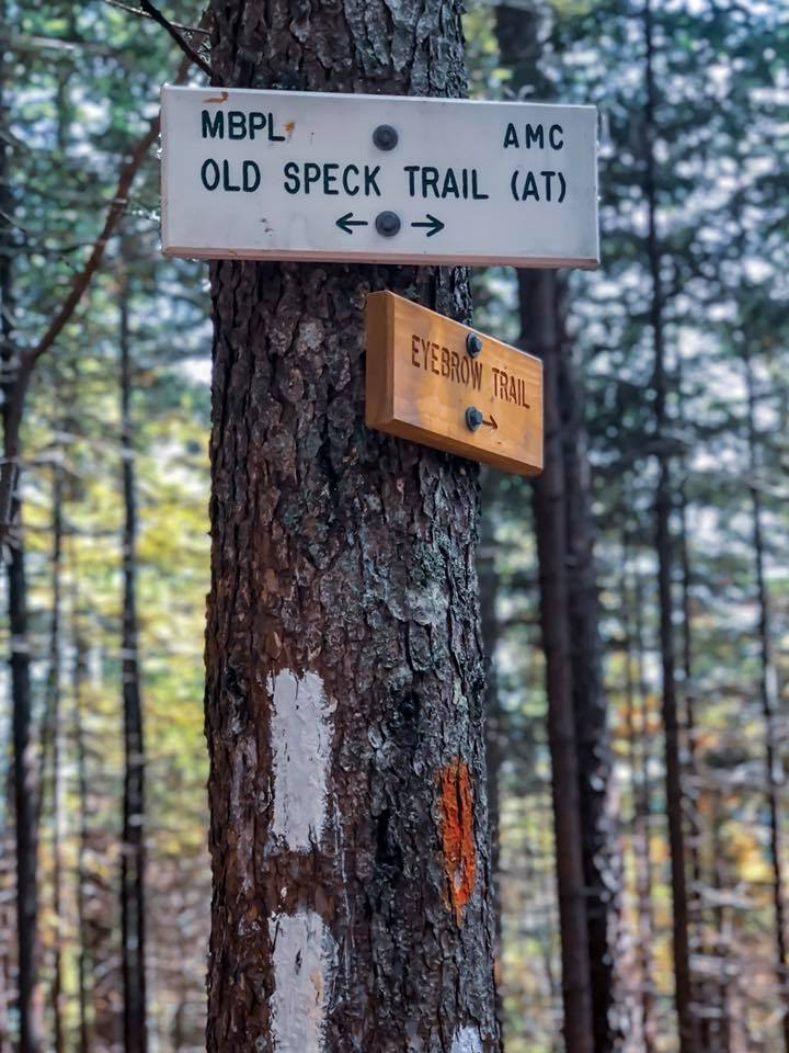 Old Speck Mountain Trail Views