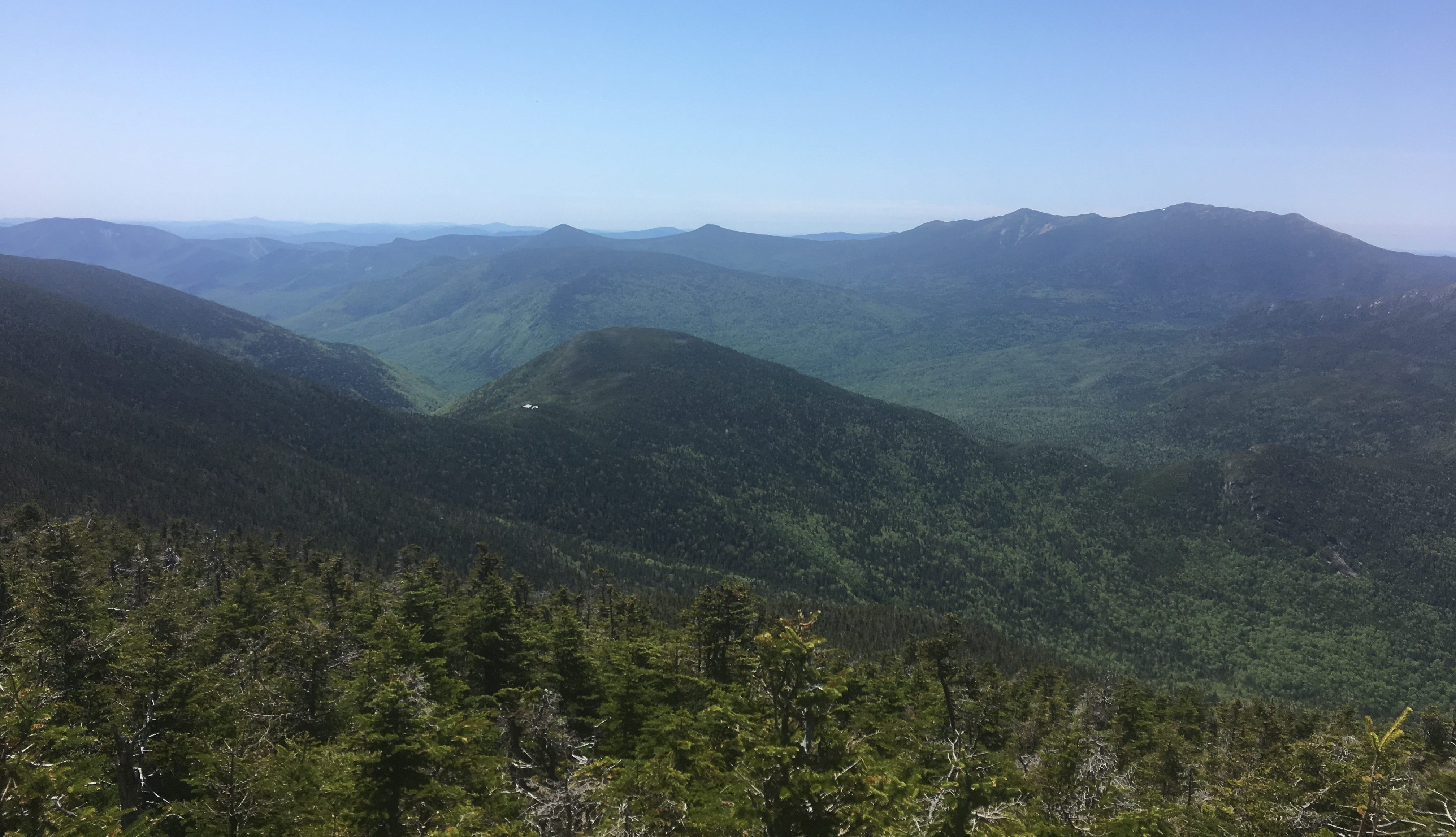Galehead Mountain Hiking Trail Guide: Map, Trail Descriptions, Pictures & More
