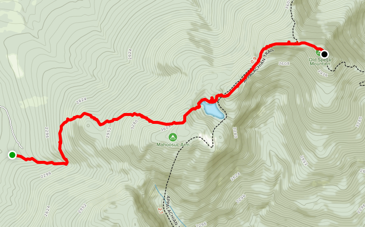 Old Speck Mountain Trail Guide