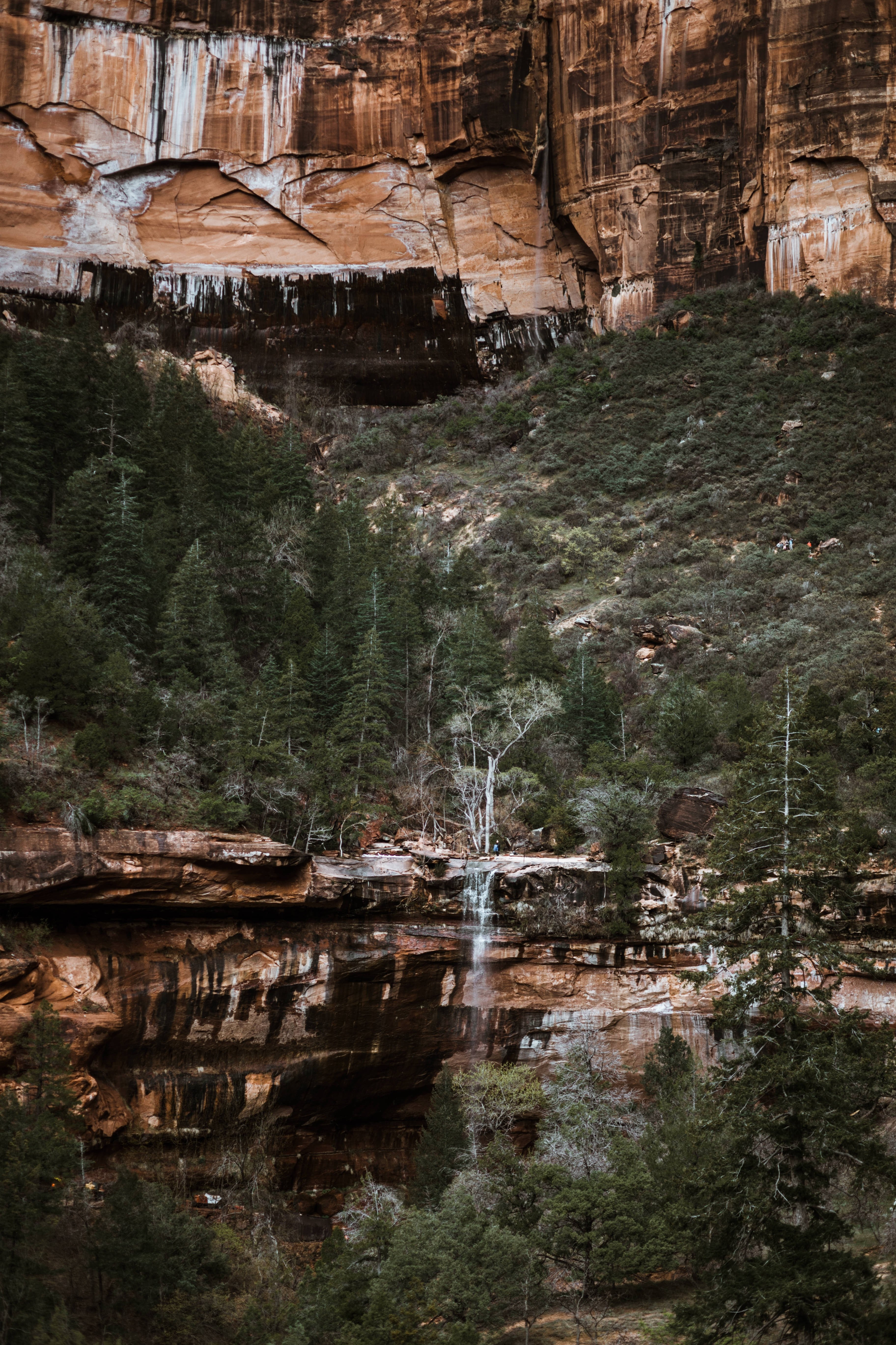 Emerald Pool Trail Zion National Park Views