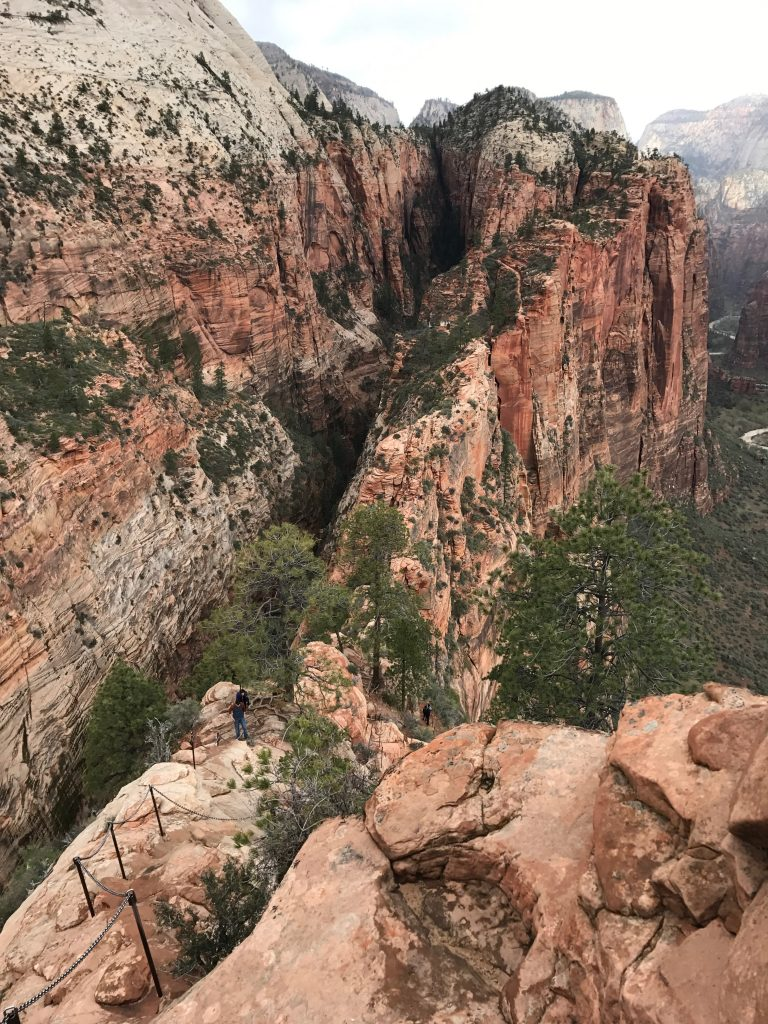 The Best Hikes In Zion National Park, Utah