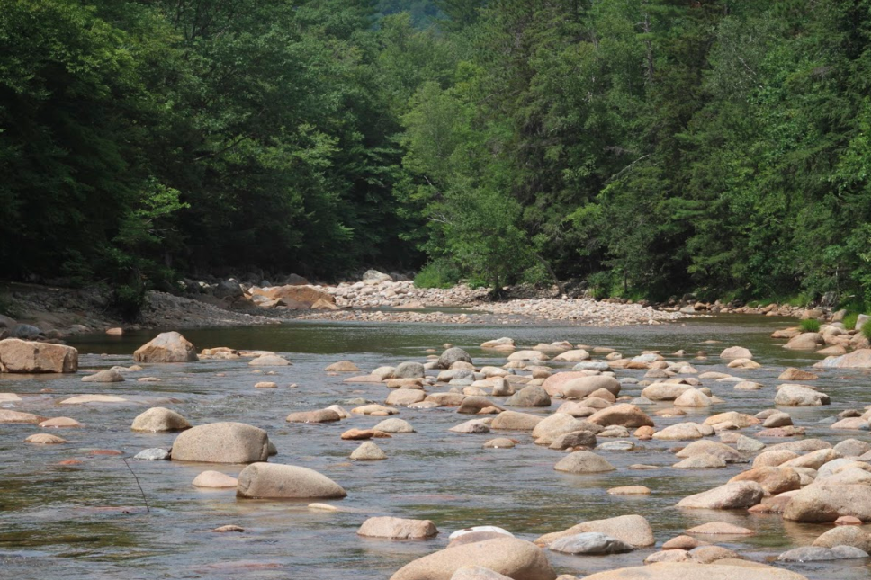 Fly Fishing The Saco River