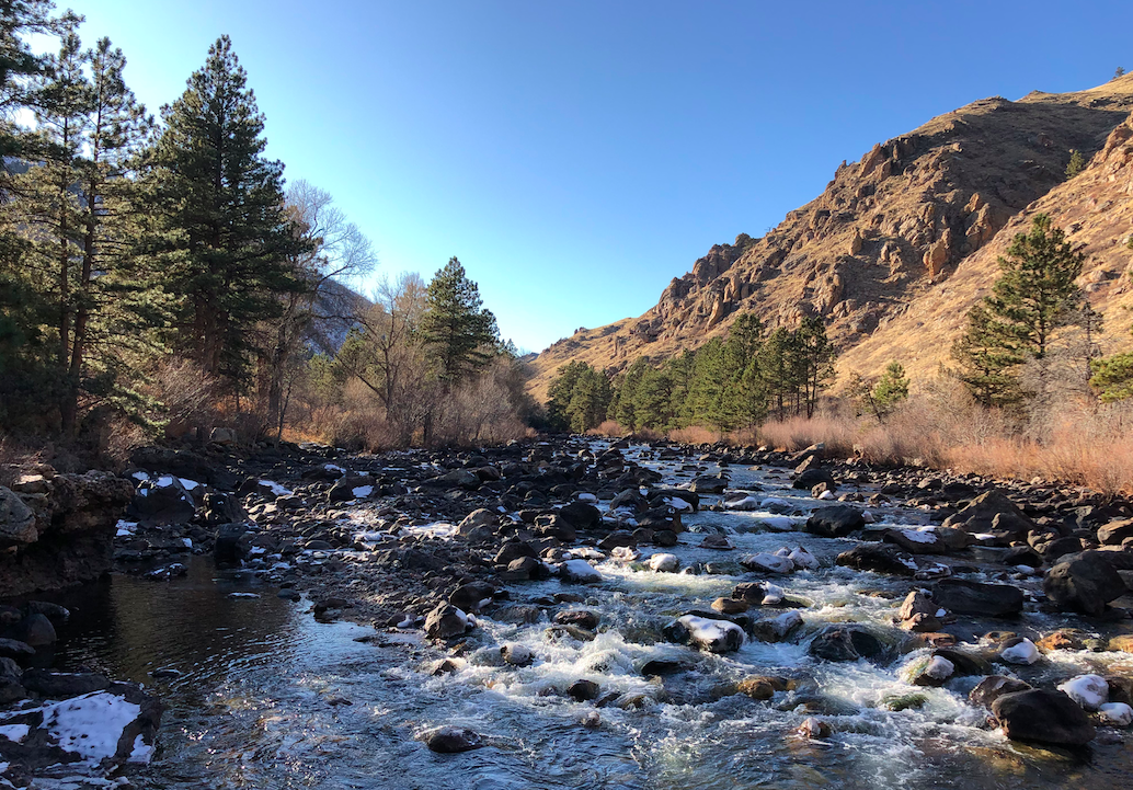 Fly Fishing Cache La Poudre River – Fort Collins, CO – Complete Guide w/ Map, Pictures, Tips & More