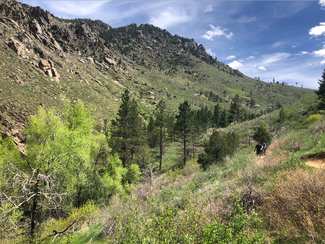 Young Gulch Trail Views Early On