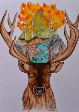 Fall Stag Head | Artwork By Piper Nunn