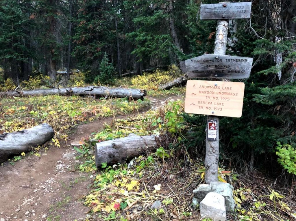 Trail Junction Before Snowmass Lake