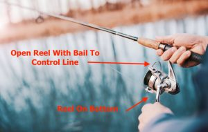 Spin Fishing Rod