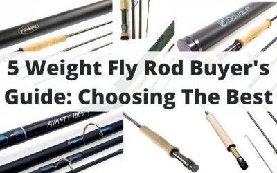 Your Guide to Choosing the Best 5 Weight Fly Rod