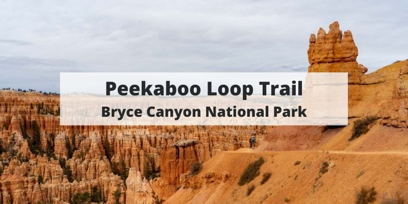 Peekaboo Loop Trail – Bryce Canyon National Park Hiking Guide