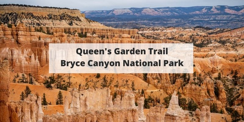 Queen's Garden Trail Hike – Bryce Canyon National Park Guide
