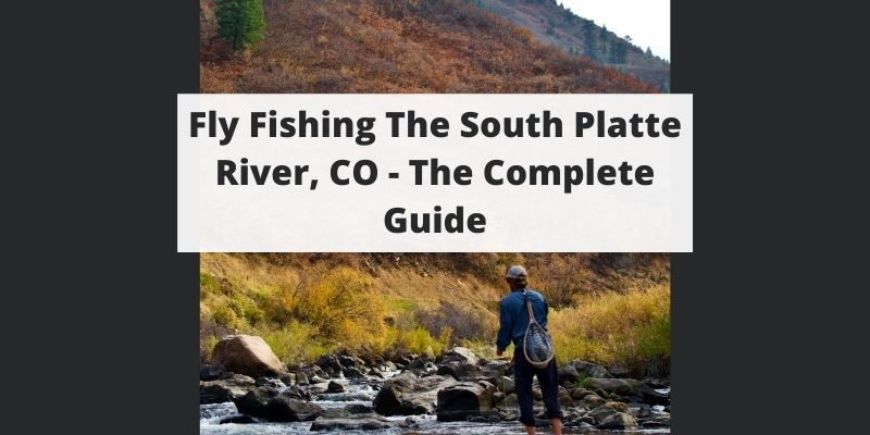 Fly Fishing South Platte River - CO