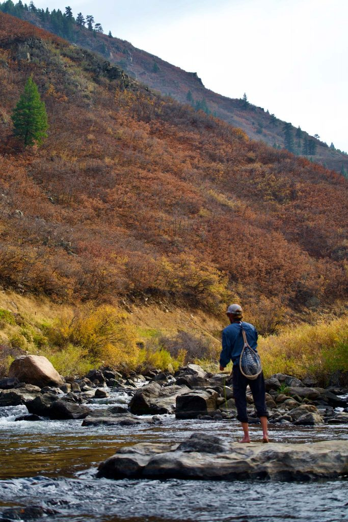 Fishing In Waterton Canyon, South Platte River