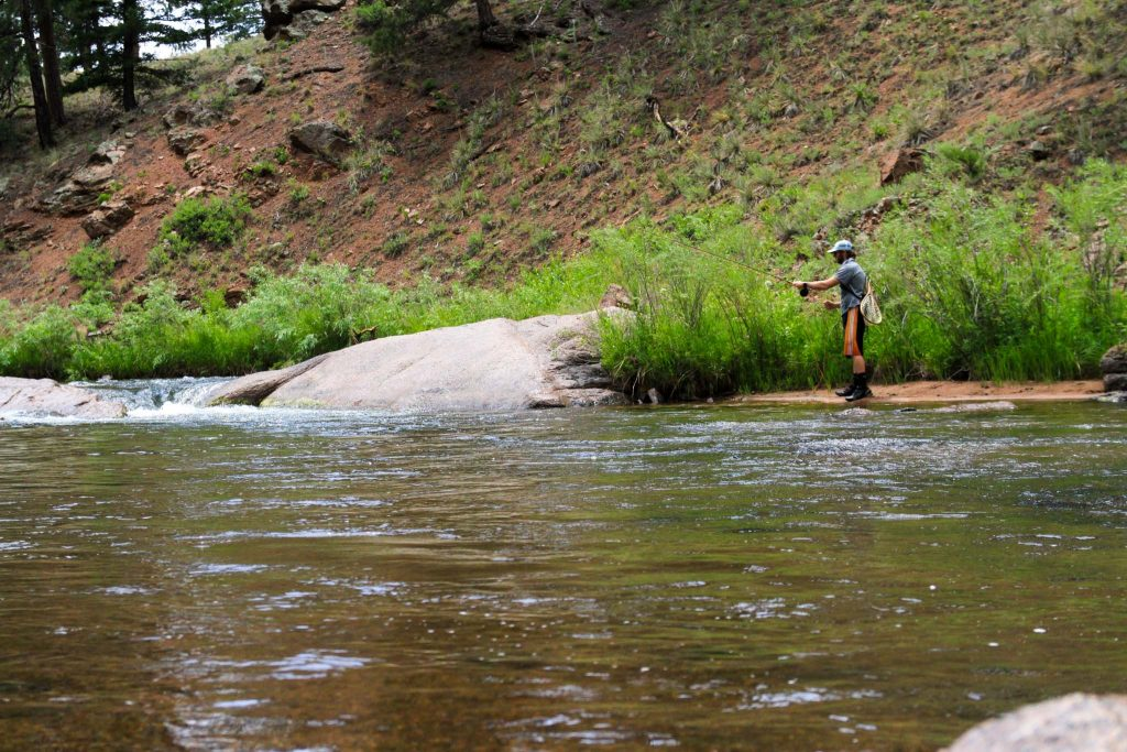 Fly Fishing South Platte Near Denver