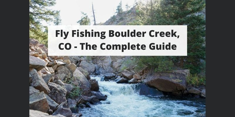 Fly Fishing Boulder Creek, CO – Complete Guide w/ Map, Pictures, Tips & More