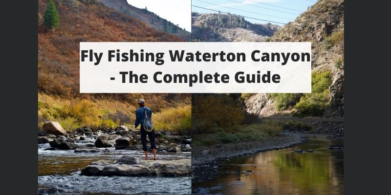 Fishing Waterton Canyon Of The South Platte River, CO – Complete Guide w/ Map, Pictures, Tips & More