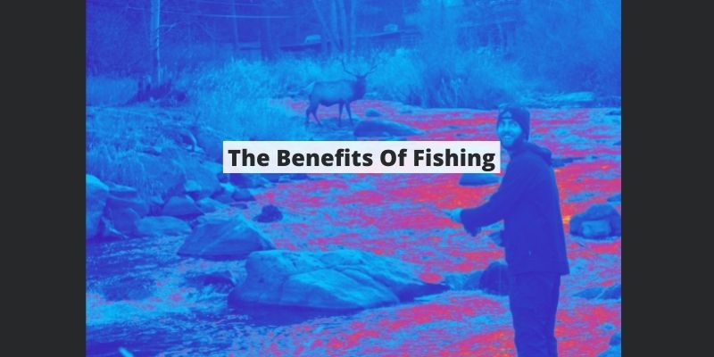The Benefits Of Fishing: Physical, Social, & Mental Benefits W/ Studies