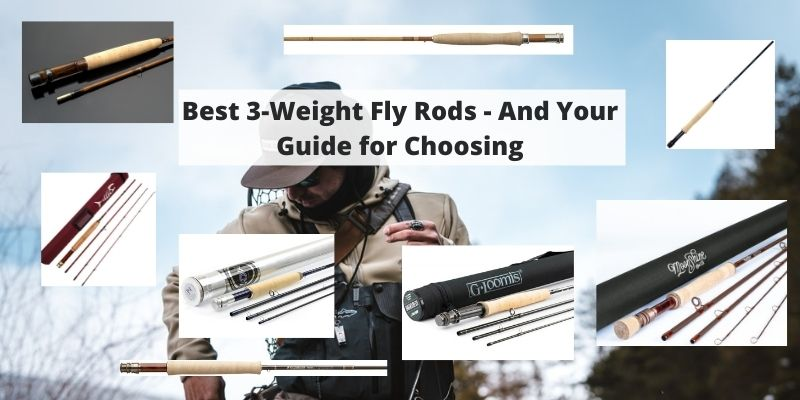 Best 3-Weight Fly Rods – And Your Guide for Choosing